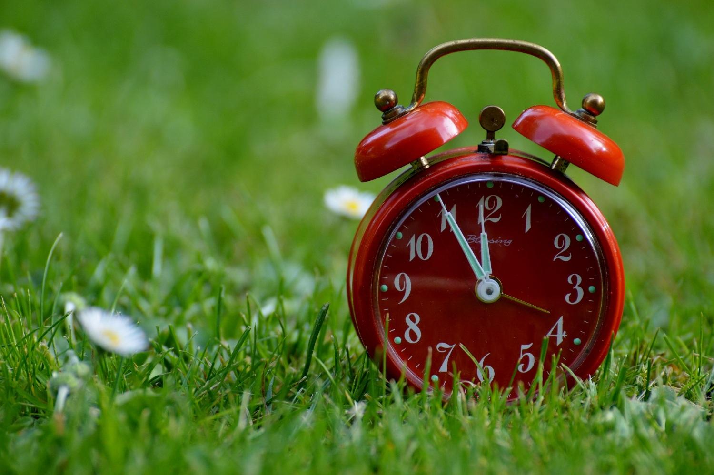 zegar na trawie
